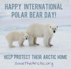 SaveTheArctic.org!