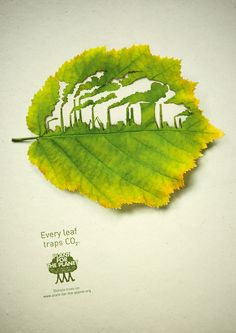 Leaves print campaign for Plant-for-the-Planet. Illustration by Nadine Hoenow/Lorenzo Durán
