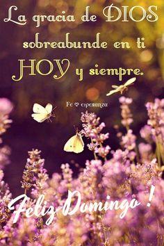 La gracia de Dios sobreabunde en ti HOY y siempre. Feliz Domingo !
