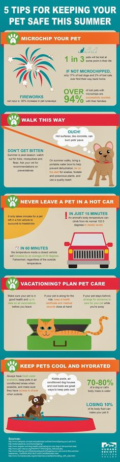 Hot cement is the one people think of least. 5 Tips for Keeping Your Pet Safe This Summer #Infographic