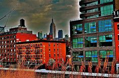 SHOT FROM THE HIGHLINE