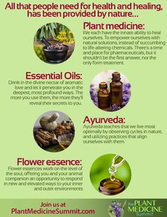 All that people need for health and healing has been provided by nature: plant medicine, essential oils, ayurveda and flower essence.  2016 Plant Medicine Summit:http://theshiftnetwork.com/?utm_source=pinterest&utm_medium=social&utm_campaign=quote