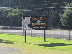 The One-Of-A-Kind Park In Oregon Where You Can See Wild Cats Up Close