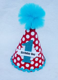 Dr. Seuss Birthday Party Hat for Boys in Red and Turquoise