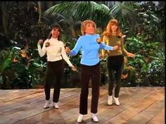 Gilligan's Island - The Honey Bees