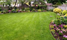 Welcome to Fox Mowing SA - Lawn Mowing Rostrevor. We are a professional lawn mowing company that operates in Rostrevor, South Australia. We have been established for a couple of years and have a vast amount of experience in the lawn mowing industry.