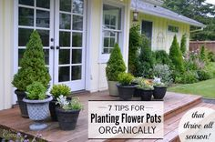 How to plant flowering garden containers organically with 7 tips that will have them thriving all season!