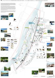 River side masterplan - Ilike the addition of the fishes! Site Analysis Architecture, Architecture Site Plan, Architecture Mapping, Sustainable Architecture, Landscape Architecture, Landscape Plans, Landscape Design, Landscaping Near Me, Luxury Landscaping