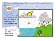 Promethean Board Lesson: The Water Cycle (N.C. 5.P.2.1) (Active Inspire Needed) Aligned with NC Essential Standards for 5th grade. Goes through all the parts of the water cycle. $3.00 TpT: Ciano's Classroom Resources http://www.teacherspayteachers.com/Product/Promethean-Board-Lesson-The-Water-Cycle-NC-5P21-684615