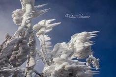 Twisted Ice Sculptures Form Atop a Frozen Mountain | The Creators Project