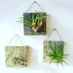 Flower pot, pot, pallet planter, Reclaimed wood, pallet