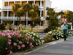 Get stop-by-stop directions for a driving tour of the Low Country in South Carolina and Georgia from National Geographic's Ultimate Road Trips. Few regions in the United States pack in as much history, culture, and natural beauty as the Low Country.
