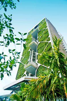 Condominium Tree House by City Developments Limited, Singapore