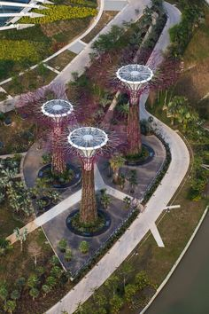 Gardens by The Bay, Singapore, 2012 by Grant Associates