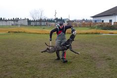 flying bandog