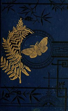 Lovely gilt and dark blue book cover of The Common Moths of England by the Rev. John George Wood with illustrations by E. Smith, T. Wood, and W. Contributed for digitization by. Book Cover Art, Book Cover Design, Book Art, Vintage Book Covers, Vintage Books, Vintage Notebook, Vintage Magazines, Vintage Art, Old Books