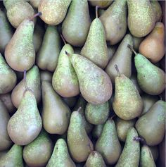 Chegworth Valley Conference Pears