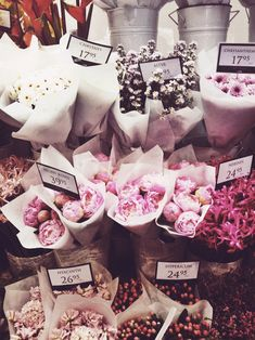 Pick a bouquet Flower Power, My Flower, Cactus Flower, Fresh Flowers, Beautiful Flowers, Pink Flowers, Pink Roses, Tea Roses, Exotic Flowers