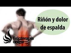 Qi Gong: Cómo activar la energía del riñón - por http://chikung-qigong.com - YouTube