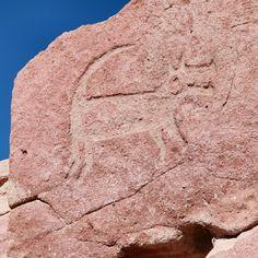 Image result for chile petroglyphs