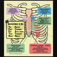 Cardiac Landmarks:: I was taught 'all physicians take money' by the Dr I worked for.