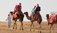 Myth #2: My Camel Ride was only a small walk around a circle #desert #safari #dubai