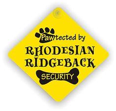 Rhodesian Ridgeback Security