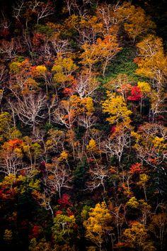Mt.Tokachi in autumn colors, Hokkaido, Japan 十勝岳