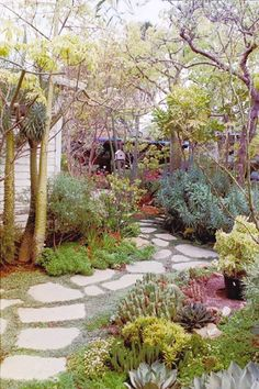 Inexpensive Walkways and Paths   Fractured Concrete Makes Free Flagstone Path