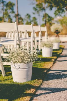 buckets of baby's breath