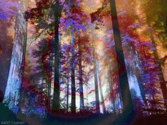 Discover & share this Psychedelic Art GIF with everyone you know. GIPHY is how you search, share, discover, and create GIFs. Nature Gif, Nature Images, Nature Photos, Trippy Designs, Trippy Gif, Have A Nice Trip, Acid Trip, Gifs, Universe Art