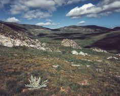 Endless Rila Fields #nature #naturephotography #sky #rila #fields #landscape #sunny #clouds #mountains #travel #travelphotography #lake #nikon #adventure #instanature #instagood #instadaily #photooftheday #bulgaria #balkan #outdoor #AGameofTones #summer #exploretocreate #realhappiness #adventurephotography #vscobulgaria #vscobalkan #hike #backpack