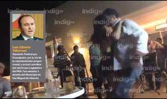 palma2mex: Dipu-Table panista renuncia por video