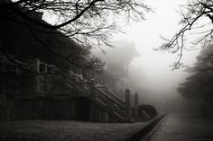 korea,temple,불국사,경주