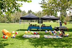 If you're having an ocean or beach themed party at the park, blow up several beach balls and toss in the grass for the kids to play with. Let each child take one home after the party.