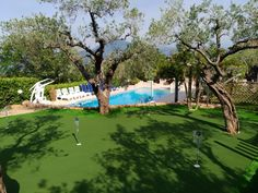Lovely putting green made by GolfMission.eu Artificial Turf, Grass, Golf Courses, Self, Astroturf, Grasses, Herb