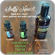 Stuffy Nose Blend Follow me on Instagram: https://www.instagram.com/fromashstooilsbyashley/ Order your oils at: http://mydoterra.com/ashleywhitesell