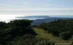Mount Vision, Point Reyes