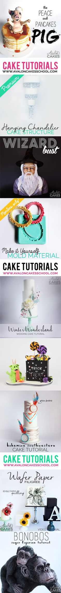 Cake and Sugar Art How-To Tutorials! So much valuable information on how to make tiered wedding cakes, sculpted novelty cakes, busts, figurines, painting, wafer paper and so much more... I kid you not, a must have for cake enthusiasts! www.avaloncakesschool.com