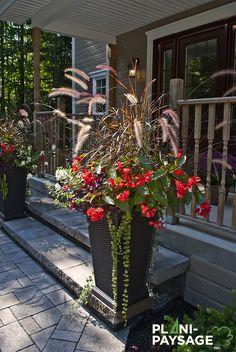 25 Ideas for tall succulent landscapes Succulent Landscaping, Landscaping Plants, Front Yard Landscaping, Tall Outdoor Planters, Outdoor Flowers, Tall Succulents, Growing Succulents, Patio Plants, Outdoor Plants