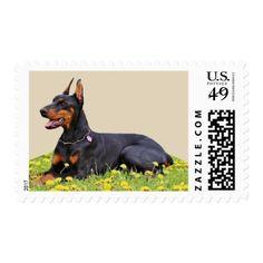 #Doberman Pinscher Dog Postage - #doberman #pinscher #puppy #pinschers #dog #dogs #pet #pets #cute