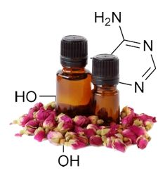 A química dos óleos essenciais