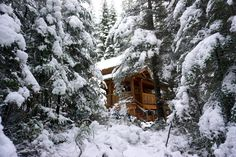 How to Storm Watch in BC: Enjoying Winter Weather at a Cosy Retreat Alaska Highway, Vacation Trips, British Columbia, Cosy, Road Trip, Weather, Snow, Explore, Watch