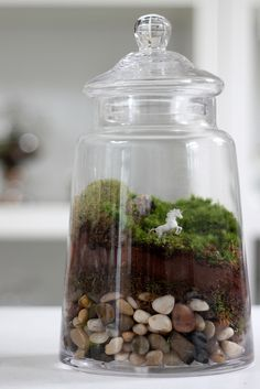 Careful layers of rock and soil make this terrarium gorgeous. I love terrariums but I need some good jars! Mini Terrarium, Twig Terrariums, Succulent Planters, Glass Terrarium, Hanging Planters, Succulents Garden, Cute Crafts, Crafts To Do, Diy Crafts
