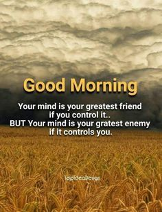Are you looking for images for good morning motivation?Browse around this site for perfect good morning motivation ideas. These enjoyable quotes will bring you joy. Motivational Good Morning Quotes, Good Morning Friends Quotes, Good Morning Image Quotes, Good Morning Beautiful Quotes, Good Morning Funny, Morning Greetings Quotes, Good Morning Good Night, Morning Sayings, Sunday Quotes