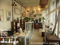 indigo1.jpg (800×600)