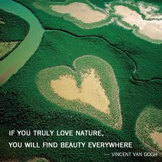 If you truly love nature, you will find beauty everywhere -- Vincent Van Gogh , Photo by Yann Arthus Bertrand