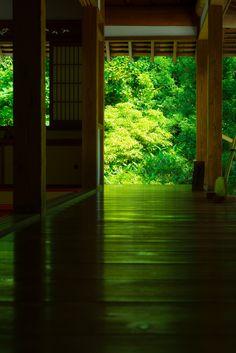 Kamakura, Japan via αcafe | My Sony Club | ソニー #緑 #Green #Kamakura