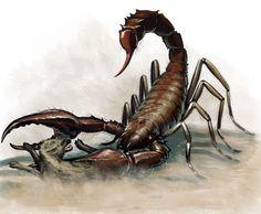 Giant Scorpian by BenWootten.deviantart.com on @deviantART