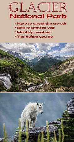 Glacier National Park  Top Tips Before You Go. Glacier National Park MontanaRocky  Mountain ... e84c533f70f5